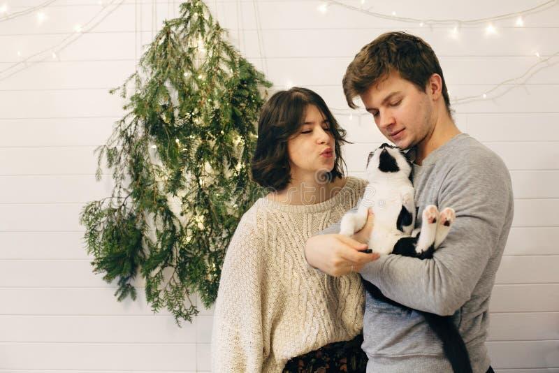 счастливая пара хипстеров, держащая кота, весело и целуясь на christmas tree огни в стильной праздничной комнате Празднование Рож стоковые фотографии rf
