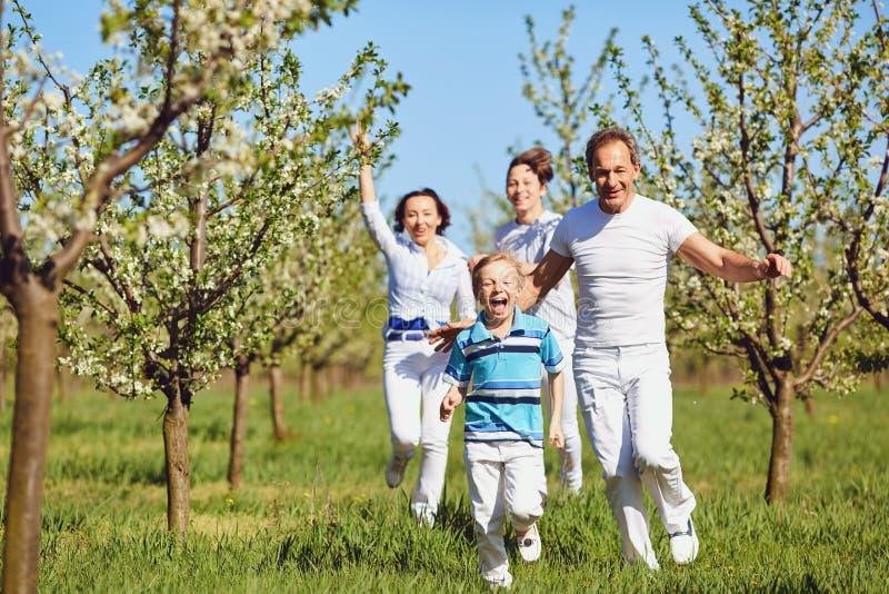 Счастливая семья бежать в парке в лете стоковое фото rf
