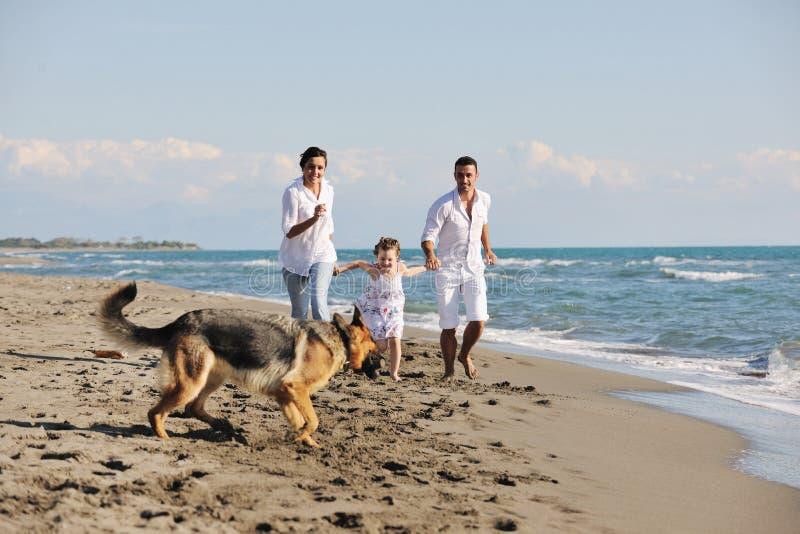 Счастливая семья играя с собакой на пляже стоковая фотография rf