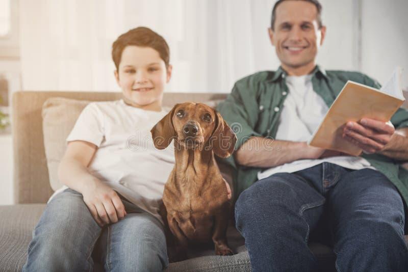 Счастливая собака имея потеху на кресле около семьи стоковая фотография
