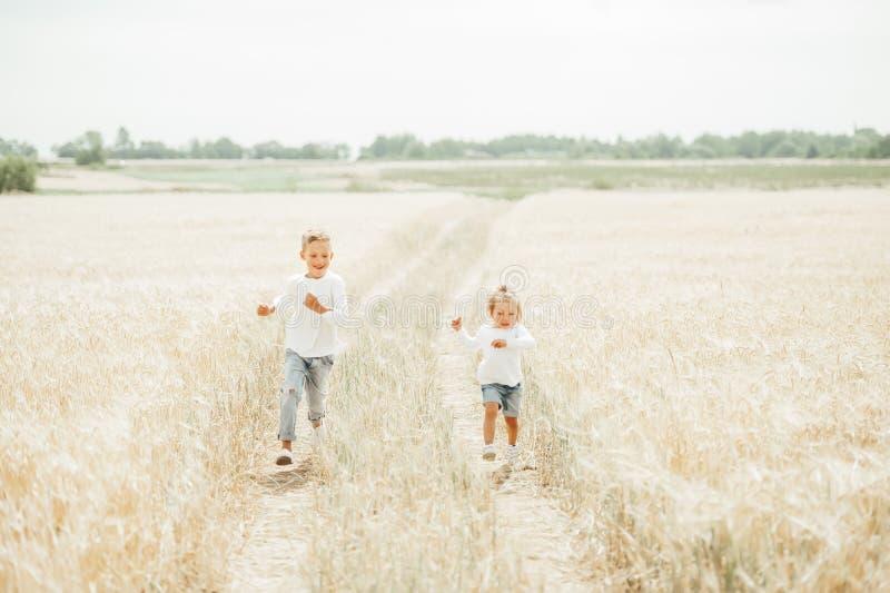 Счастливые дети бегут в пшеничном поле в солнечном дне стоковая фотография rf