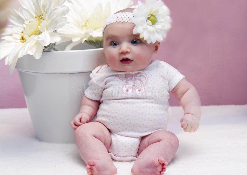 Счастливые младенец и маргаритки стоковая фотография