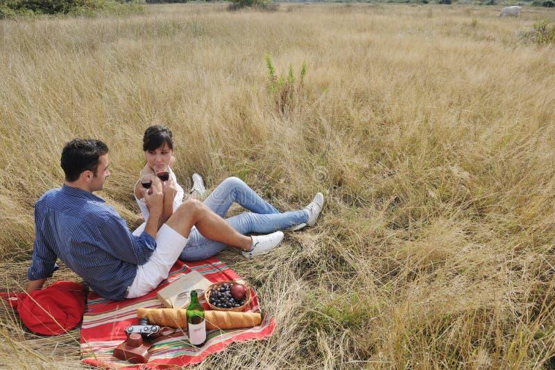 Счастливые пары наслаждаясь пикником сельской местности стоковые изображения