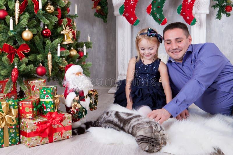 счастливые праздники Отец и дочь играя с котом около рождественской елки стоковые изображения