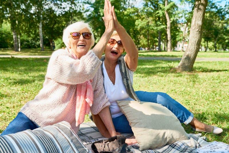 Счастливые старшие друзья в парке стоковое фото rf