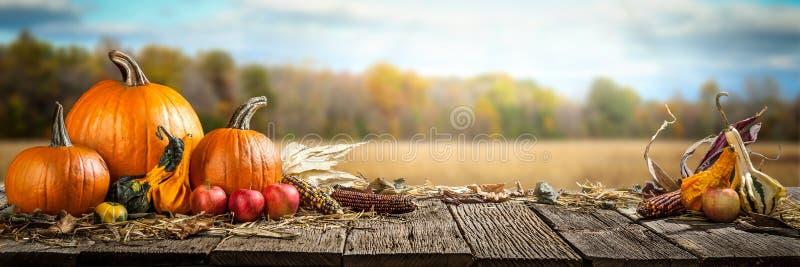 Счастливый день благодарения стоковые фото