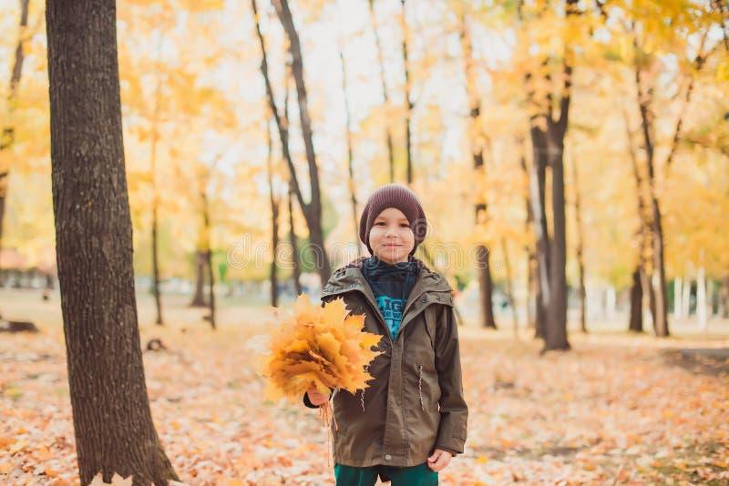 Счастливый мальчик ребенк идя в парк крупный план предпосылки осени красит красный цвет листьев плюща померанцовый стоковые изображения rf