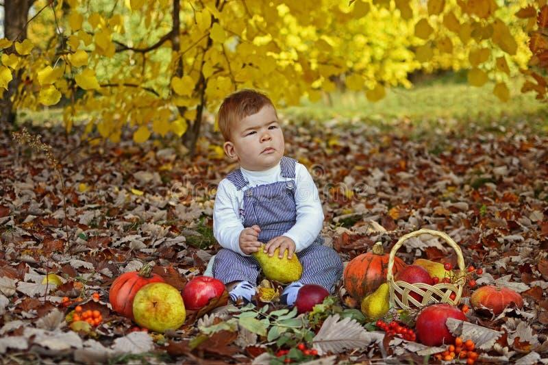 Счастливый мальчик с тыквами, яблоками, грушами в парке осени стоковые фото