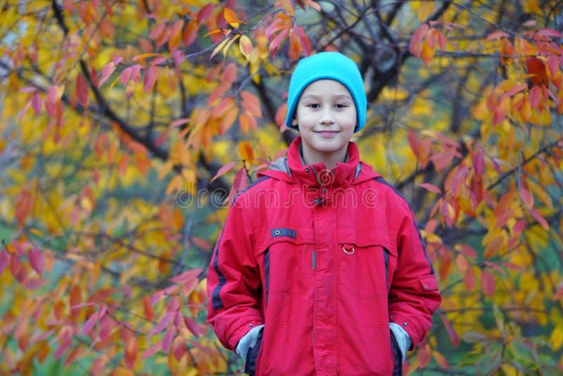 Счастливый мальчик outdoors в осени стоковые фотографии rf