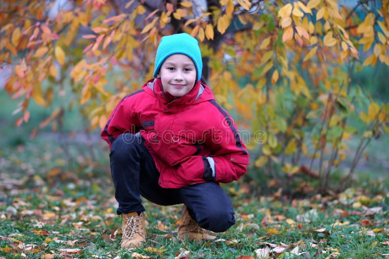 Счастливый мальчик outdoors в осени стоковые изображения rf