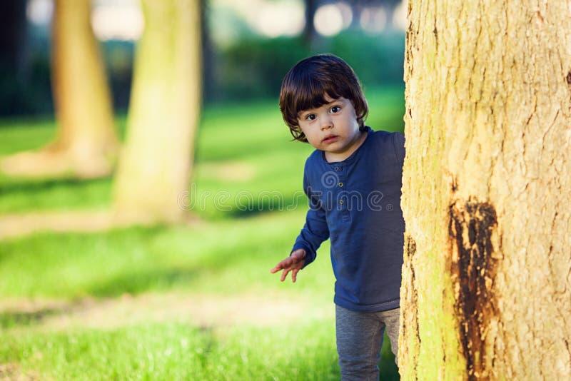 Счастливый молодой мальчик пряча за деревом с зеленой травой на том основании стоковые фотографии rf