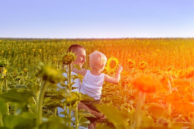 Счастливый отец с его маленьким сыном в его оружиях стоя на зеленом поле солнцецветов против голубого неба стоковое изображение rf
