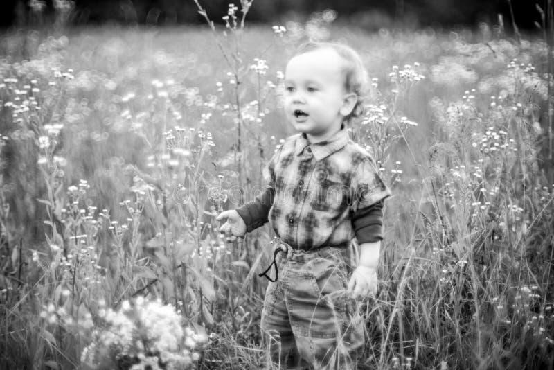 Счастливый ребенк в одичалом поле стоковые изображения rf