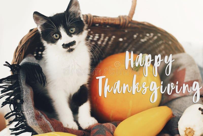 Счастливый текст благодарения, поздравительная открытка сезонов Sig благодарения стоковые фотографии rf