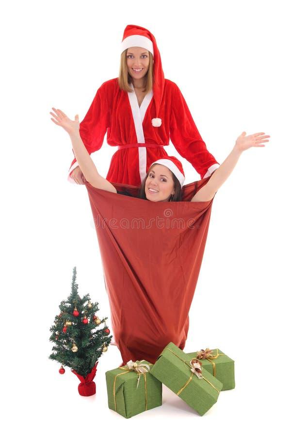 Счастливый santa и gnome в мешке стоковое фото