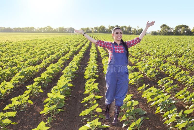 Счастливая девушка фермера в поле солнцецвета стоковое изображение rf