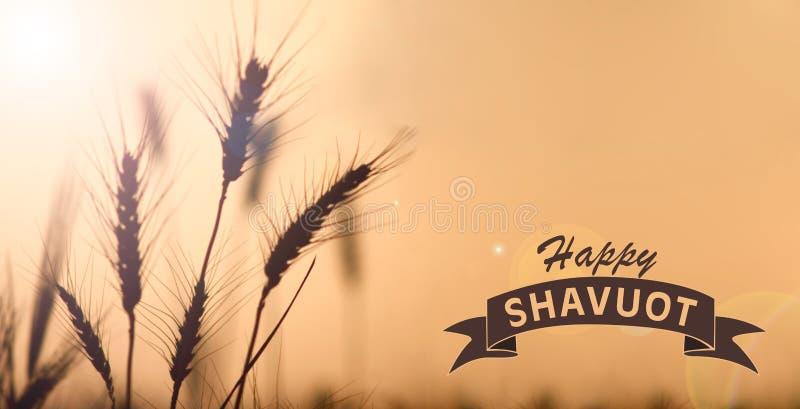 Счастливая карточка Shavuot иллюстрация штока