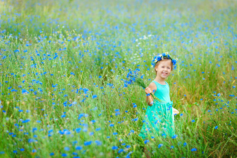 Счастливая маленькая девочка в поле держа букет голубых цветков стоковые изображения rf
