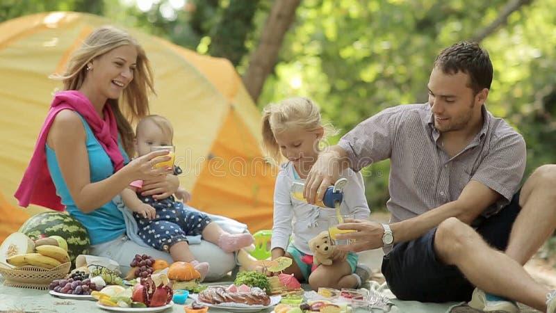 Счастливая семья на пикнике акции видеоматериалы