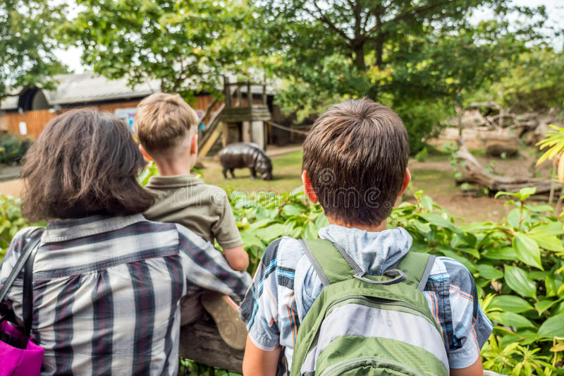 Счастливая семья смотря гиппопотама на зоопарке стоковое изображение