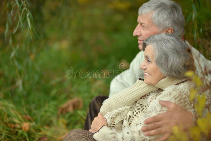 счастливое пар пожилое стоковые изображения