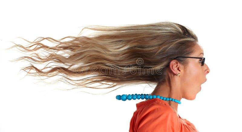 Счастливые волосы женщины стоковое изображение
