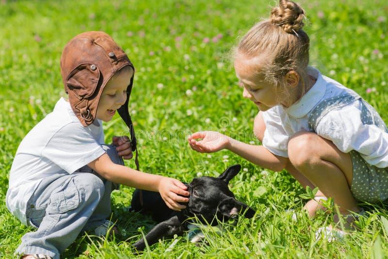 Счастливые дети играя с собакой, французский бульдог стоковое изображение rf