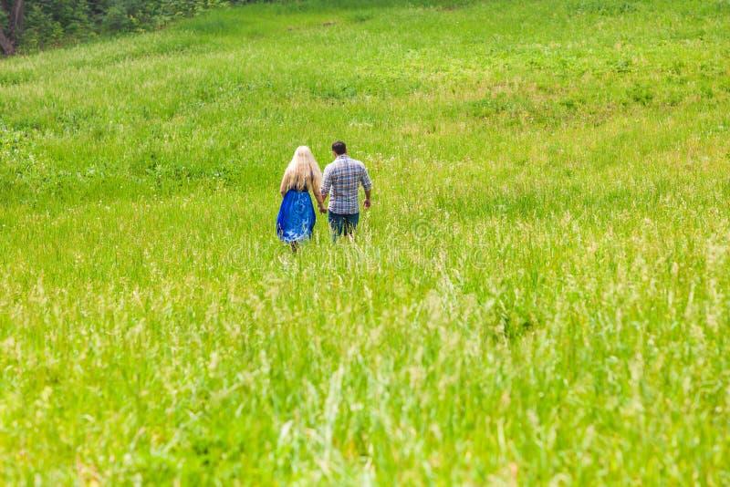 Счастливые пары идя на луг в природе лета, вид сзади стоковая фотография rf