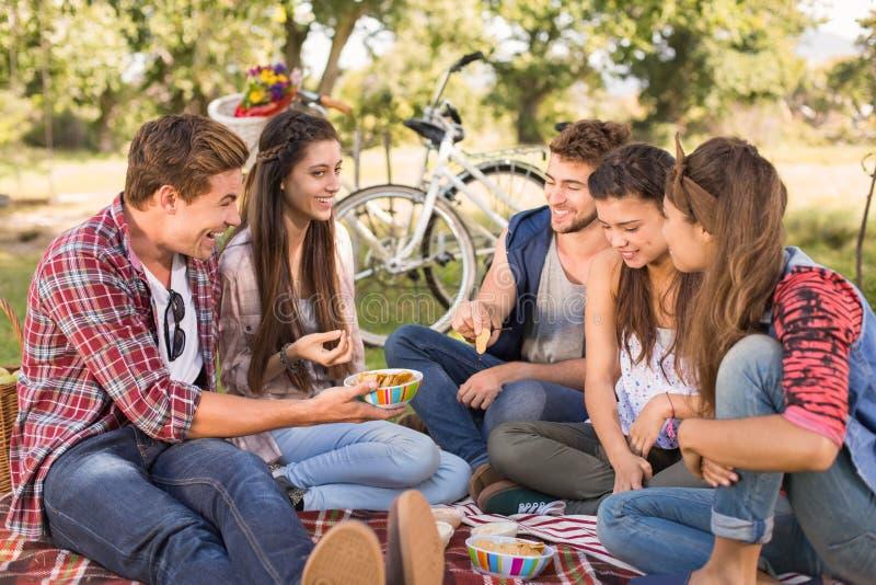 Счастливые друзья в парке имея пикник стоковые изображения rf