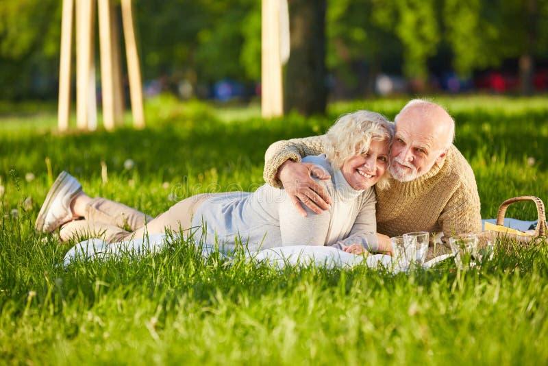 Счастливые старшие пары делая пикник в парке стоковое изображение