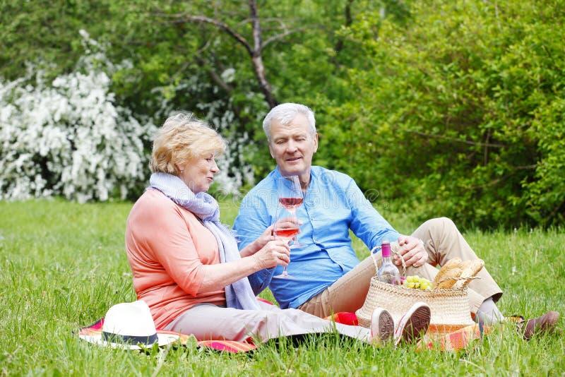 Счастливые старшие пары напольные стоковые изображения rf