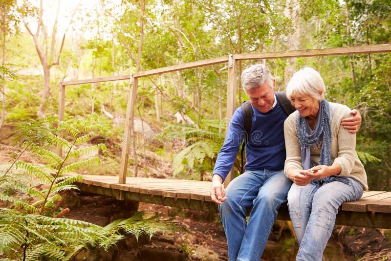 Счастливые старшие пары сидя на мосте в лесе, горизонтальном стоковые фото
