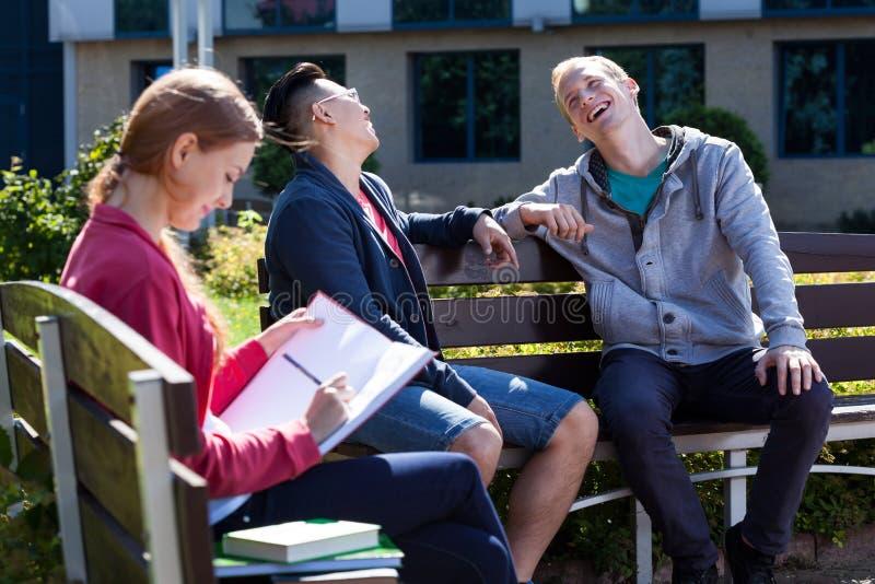 Счастливые студенты во время солнечного дня стоковые фотографии rf