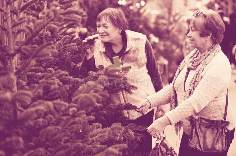 Download Счастливые усмехаясь зрелые женщины выбирая спрус Стоковое Фото - изображение насчитывающей счастливо, киоск: 81800376