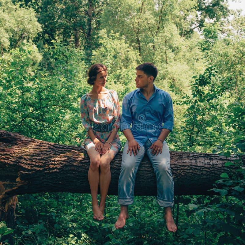 Счастливые любящие пары сидя на дереве в лете стоковая фотография