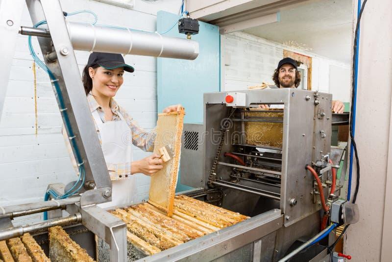 Счастливые Beekeepers работая на заводе извлечения меда стоковое изображение rf