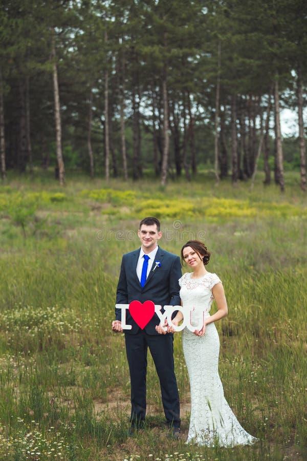 Счастливый жених и невеста празднуя день свадьбы пожененный целовать пар Длинная концепция семейной жизни стоковые фото