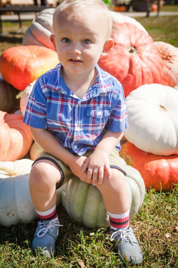 Счастливый мальчик на заплате тыквы стоковая фотография rf