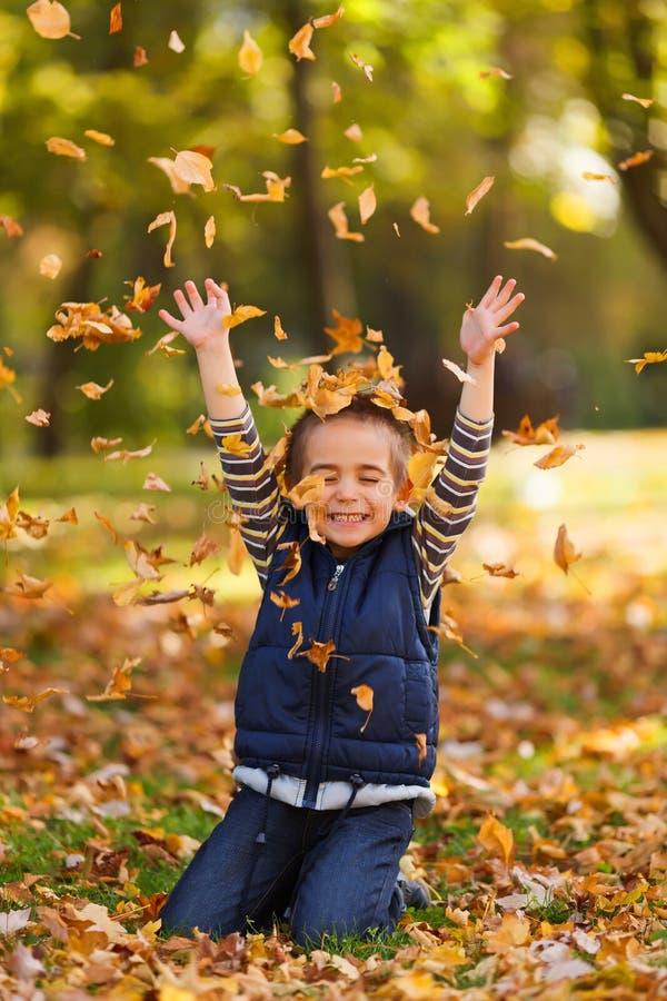 Счастливый мальчик с листьями осени стоковое изображение rf