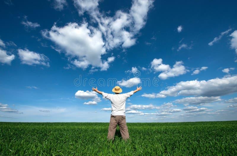 Счастливый молодой человек на зеленом поле пшеницы стоковая фотография rf