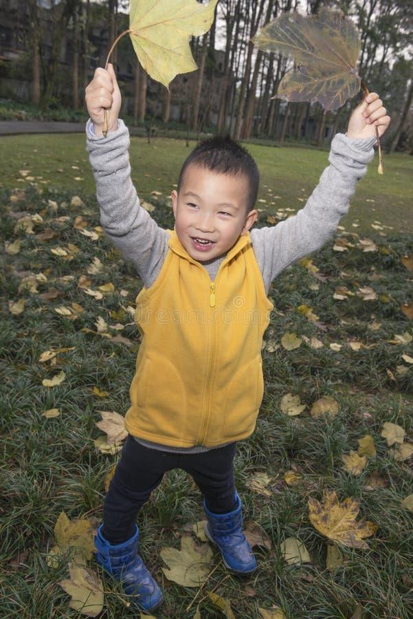Счастливый ребенк на осени стоковые фото