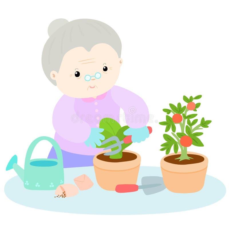 Счастливый салат завода влюбленности бабушки иллюстрация вектора