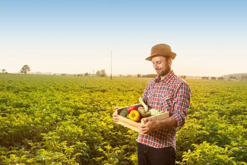 Счастливый фермер с овощами перед ландшафтом поля стоковые фото