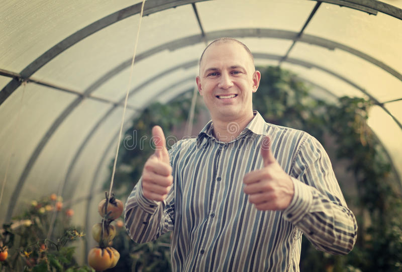 Счастливый человек в оранжерее стоковое изображение rf