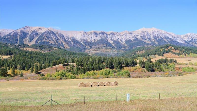 США, Монтана: Ландшафт - горная цепь Bridger стоковая фотография rf