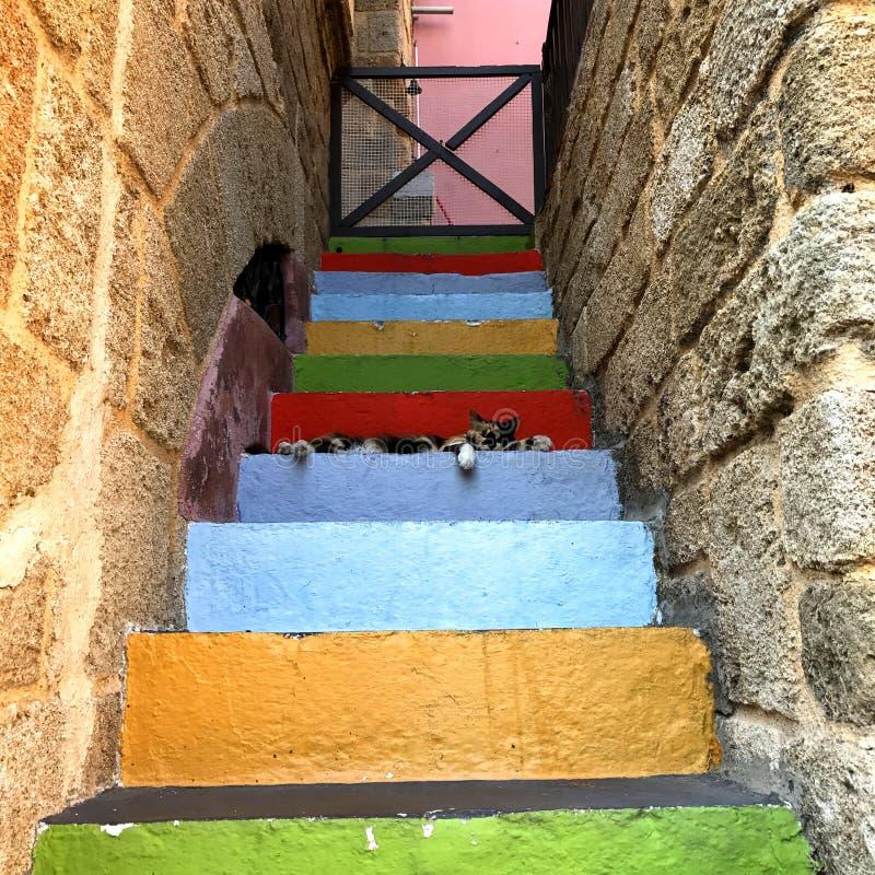 Съемка концепции лестниц стоковое изображение rf