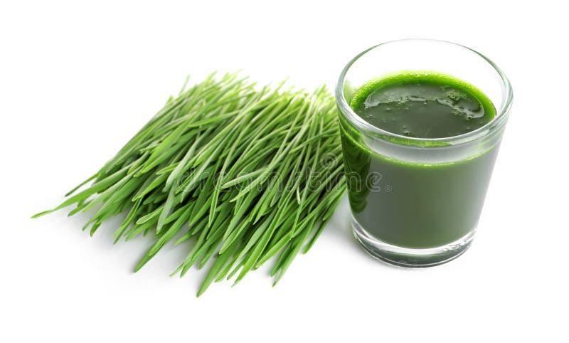 Съемка питья травы пшеницы на предпосылке стоковое фото