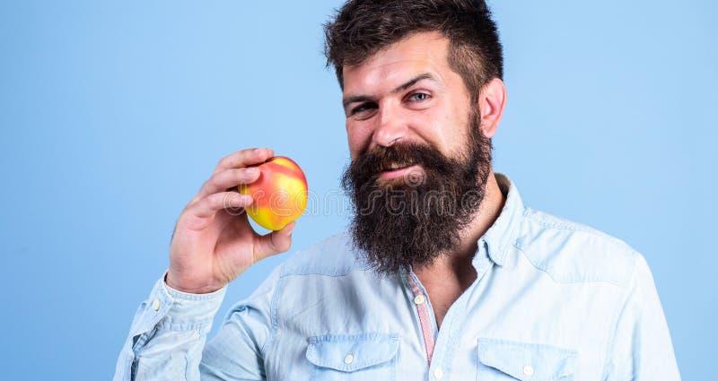 съешьте здоровую Человек с рукой плодоовощ яблока владением битника бороды Факты и пособия по болезни питания Плодоовощ яблок поп стоковое фото rf
