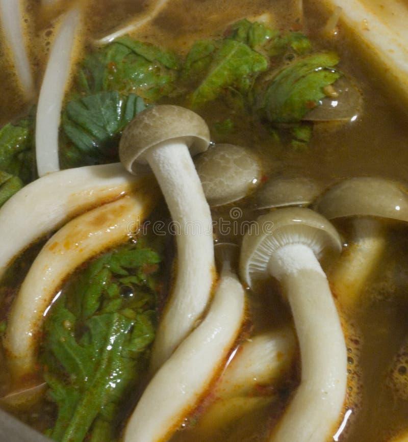 съешьте shabu грибов готовое к стоковая фотография