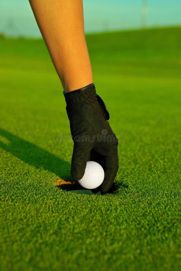 Сыграйте в гольф, рука игрока в гольф восстанавливая шарик в отверстии стоковое фото rf